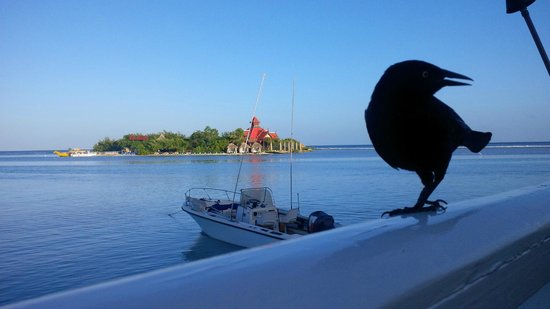 Sandals Royal Caribbean Resort and Private Island: Breakfast overlooking the Private  Island