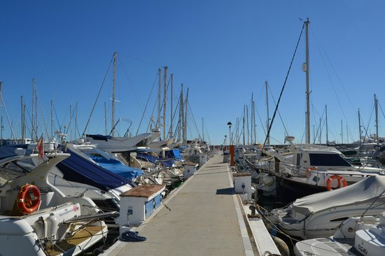 Estepona Marina: Muelle