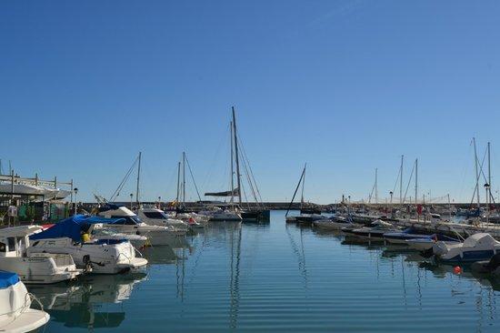 Estepona Marina: embarcaciones