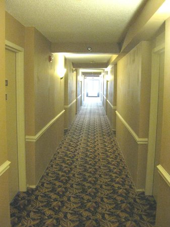 Holiday Inn Express & Suites: 4th floor hallway