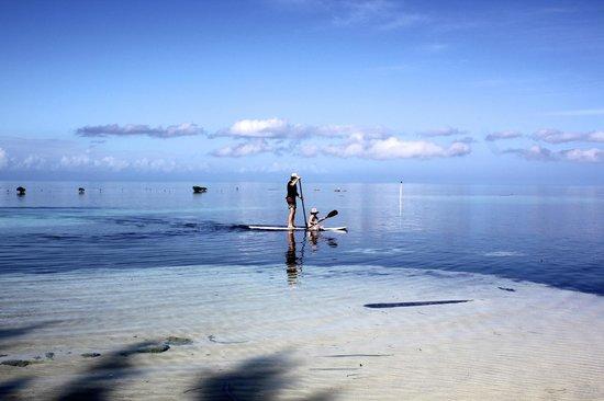 Isla Marisol Resort: SUP