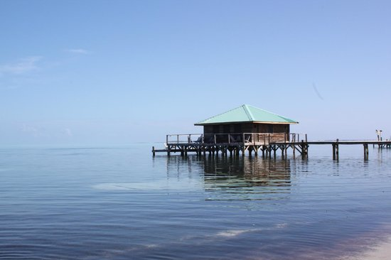 Isla Marisol Resort: the bar