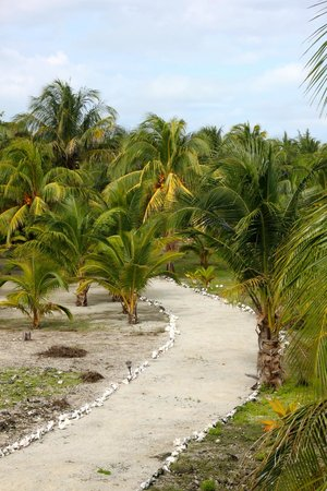 Isla Marisol Resort: walk from reef house