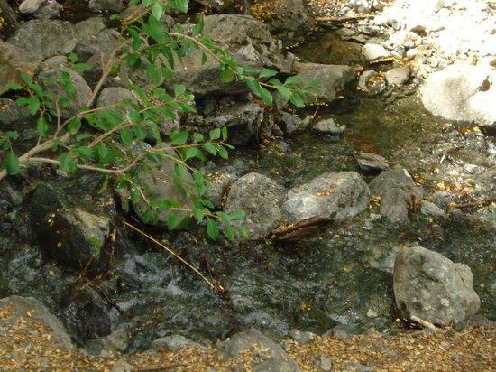 Los Baqueanos: en la casacada