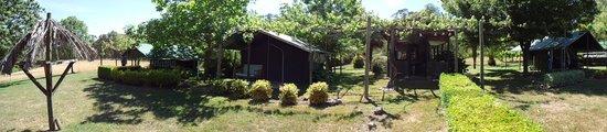 Mitta Mitta, Austrália: Jungle camp