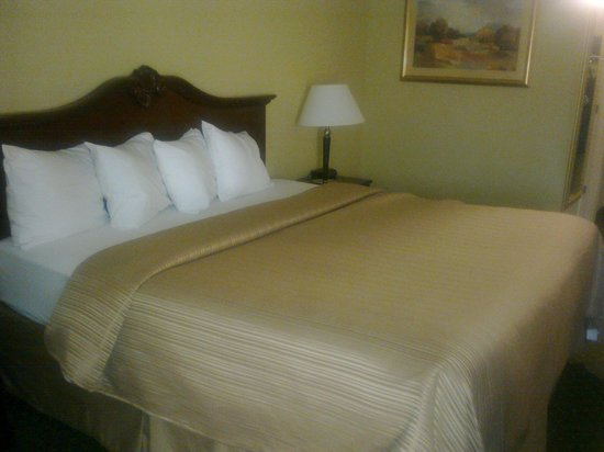 Quality Inn at Carowinds: King size bed