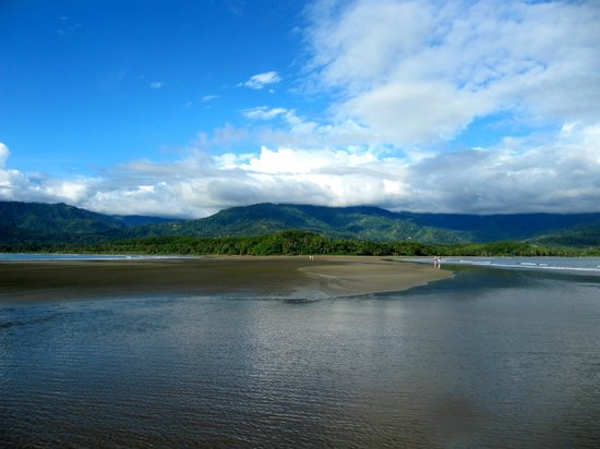 Hospedaje El Bosquecito: Probably on top of your to-do-list: Go to the tip of the whale's tail at low tide!