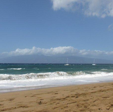 Royal Lahaina Resort : Beach