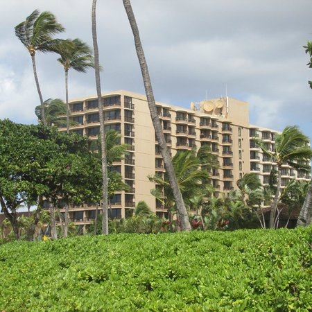 Royal Lahaina Resort: Resort