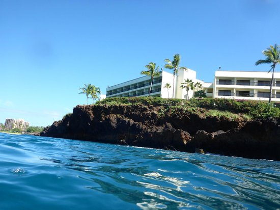 Sheraton Maui Resort & Spa : View from Ocean - looking up to the cliff and Bldg 6