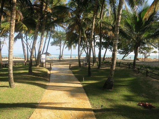 Iberostar Costa Dorada: Sentier pour aller à la plage