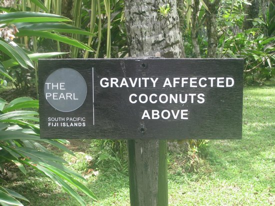 The Pearl Resort: Cool notice
