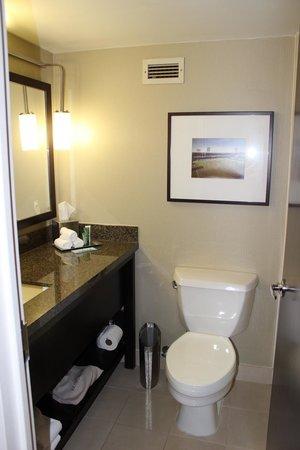 Bathroom, Hilton St. Louis at the Ballpark, St. Louis, MO