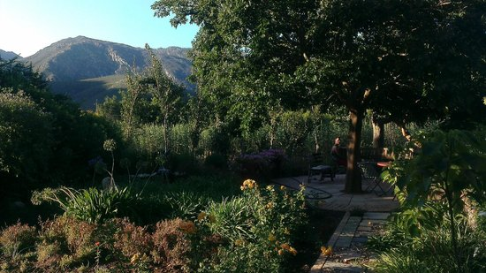 Aasvoelkrans Bed and Breakfast: The garden at Aasvoelkrans in evening