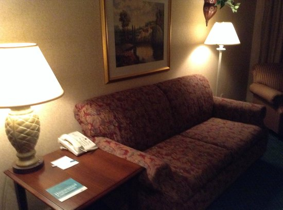 Homewood Suites by Hilton Columbus / Worthington: Couch in the front room
