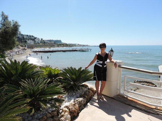 Jasmine Beach Resort: Территория отеля