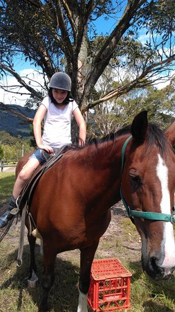 "Big Bell Farm: Horse riding with ""Molly"""