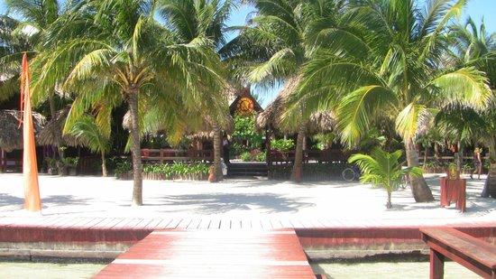 Ramon's Village Resort : dining on right, lounging on left