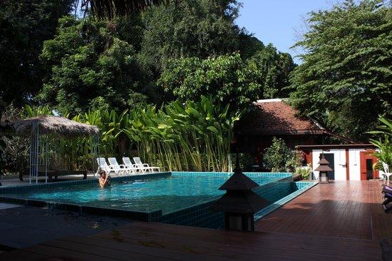 Tonnam Homestay: Pool view