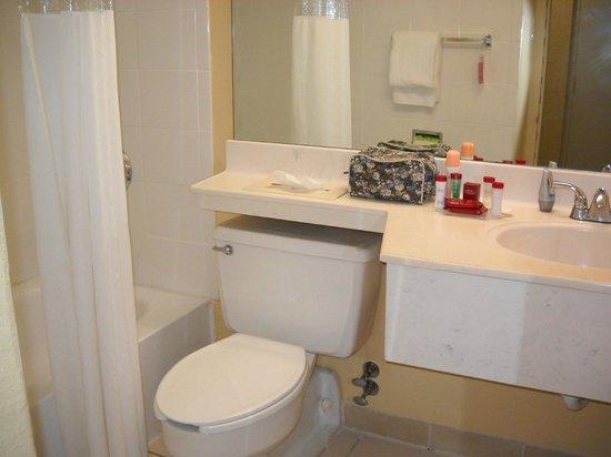 Ramada Plaza Fort Lauderdale : El baño, en muy buen estado