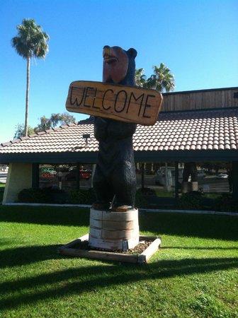 Black Bear Diner: Bear  statue outside of the restaurant