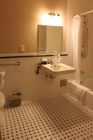 Wolcott Hotel : Our bathroom