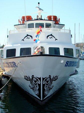 Shoreliner Cruises