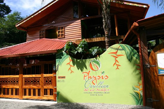 Physis Caribbean Bed & Breakfast: Entrance