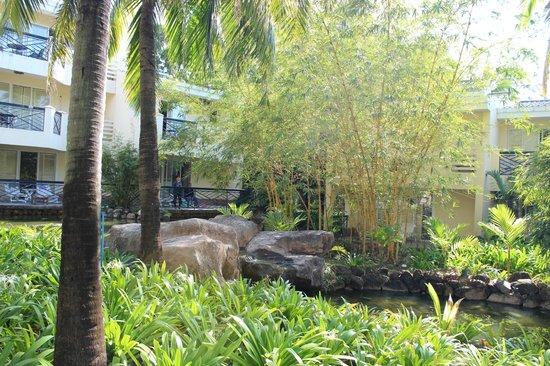Palm Beach Resort & Spa Sanya : пруд и водопад с рыбками