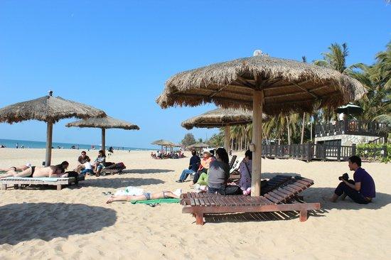 Palm Beach Resort & Spa Sanya : Лежаки отеля