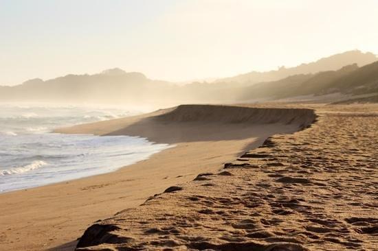 Zinkwazi Beach, جنوب أفريقيا: Zinkwazi Sunset Mist