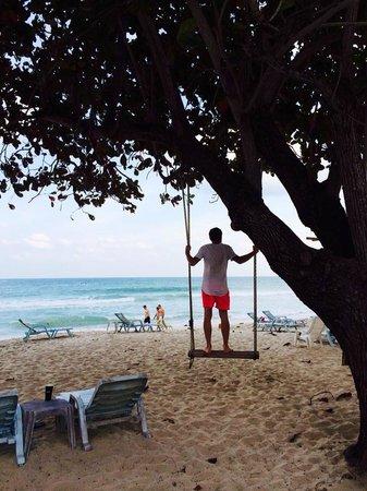 "Beach 2014 ""King's Garden Resort"""