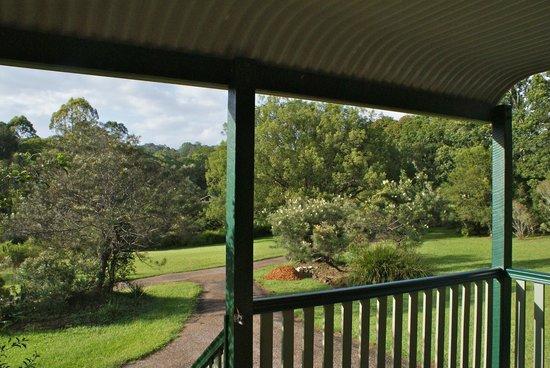 Crabbes Creek Cottages: View from the Grevillea verandah