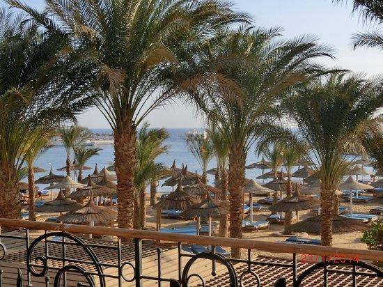 Beach Albatros Hotel: das Bild spricht für sich