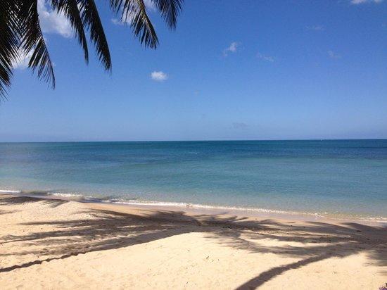 West Coast Beach Resort: Whitesand beach calm and blue sky