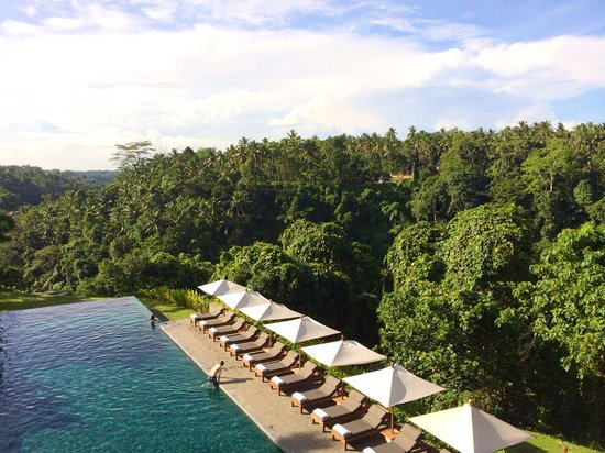Alila Ubud: Pool view is hard to beat!