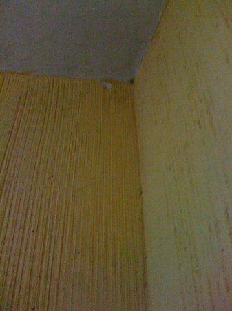 Mayaland Plaza Hotel: tired walls room 25