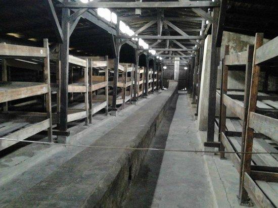 KRK-KrakowTours: De barakken van Auschwitz