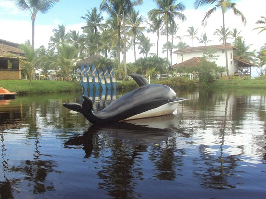 Resort Tororomba : Lugar onde oferece passeio de pedalinho e caiaque.