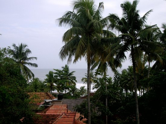 Palm Ayurvedic Beach Resort: Вид на океан из отеля