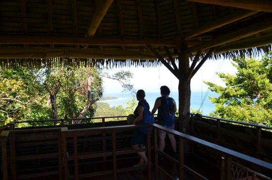 Lapa Rios Ecolodge Osa Peninsula: Observation platform