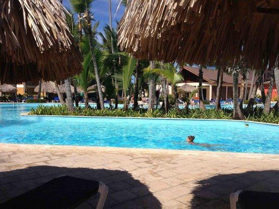 Grand Palladium Punta Cana Resort & Spa : Бассейн