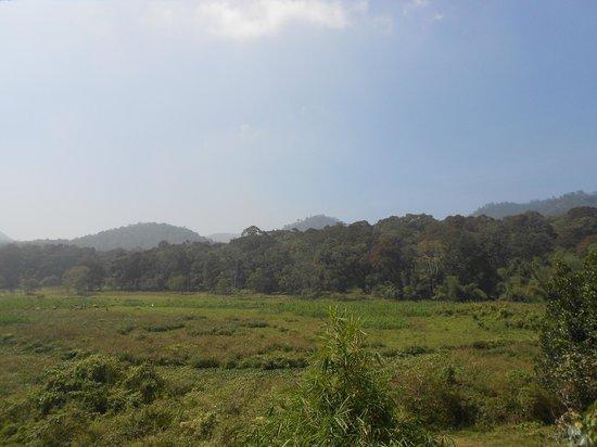 Kerala House : View