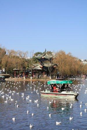 Green Lake (Cui Hu): Lake view