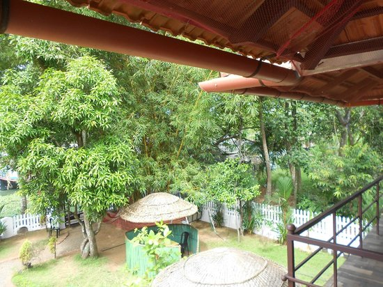 Bamboo Lagoon Backwater Front Resort : View from rooms