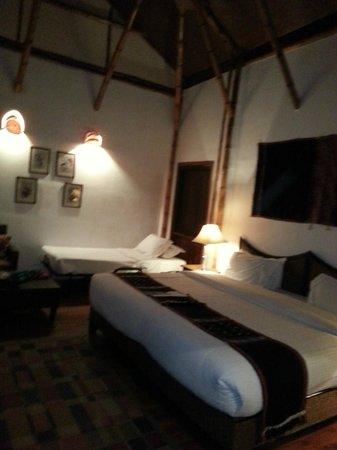 Diphlu River Lodge: Cottage
