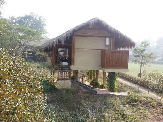 Diphlu River Lodge: Adjacent River Cottage