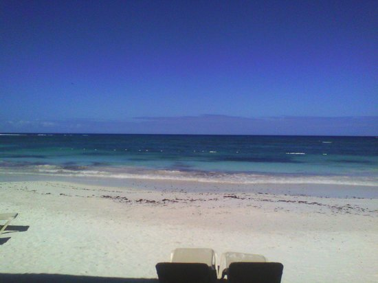 Sandals Grande Antigua Resort & Spa : beach view.