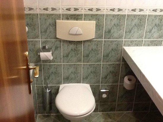 Adria Hotel Prague: с/у