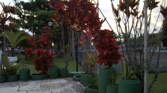 Romanticos Chales Ponta das Canas: Jardim